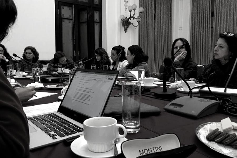 Reunión Org Sociedad Civil inclusivas y Comisión Educación Cámara Diputados